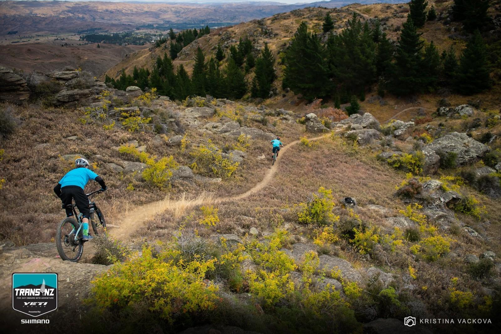 53165216 2243521489025180 7951716912969285632 o - FlowyMcFlowerton - Mountain Biking Pictures - Vital MTB