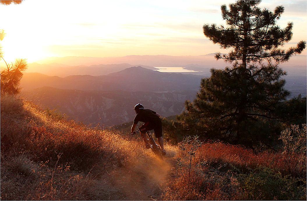 Land of OZ - ozzer - Mountain Biking Pictures - Vital MTB