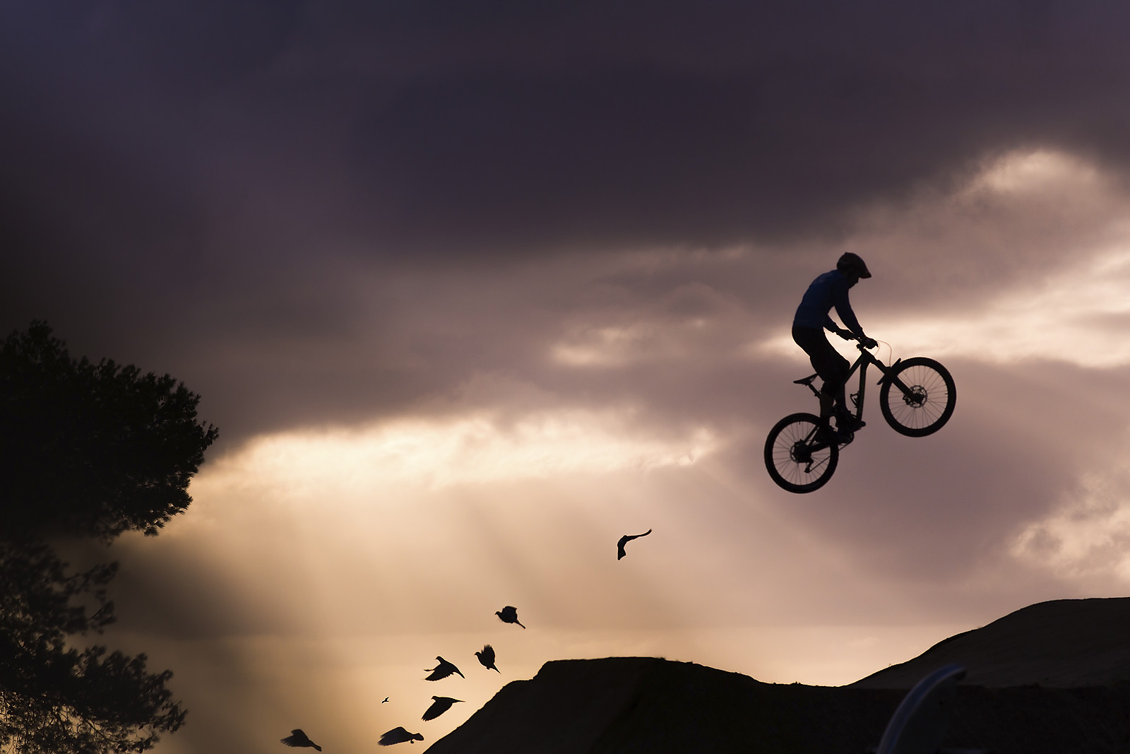 Doves flying in sunrise - Brynjulfmedstaven - Mountain Biking Pictures - Vital MTB