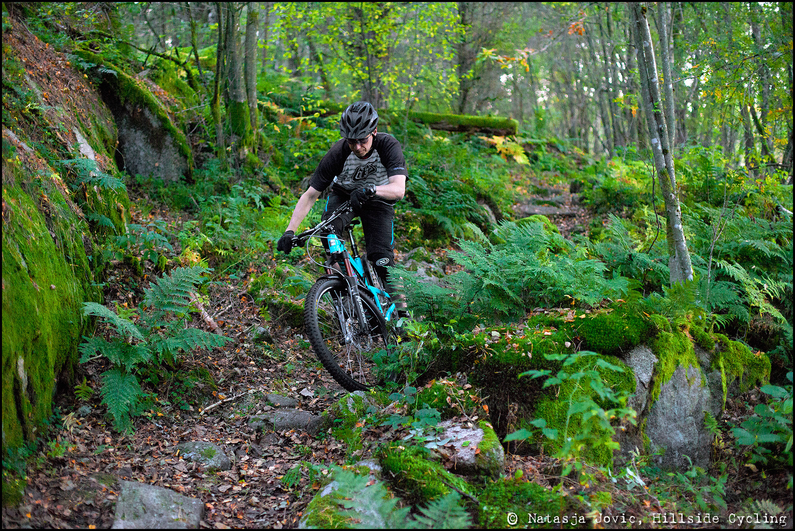 It's a jungle out there... - Hillside Cycling - Mountain Biking Pictures - Vital MTB