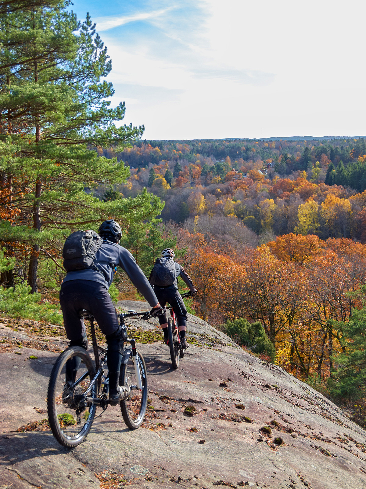 Hillside Trail - Hillside Cycling - Mountain Biking Pictures - Vital MTB