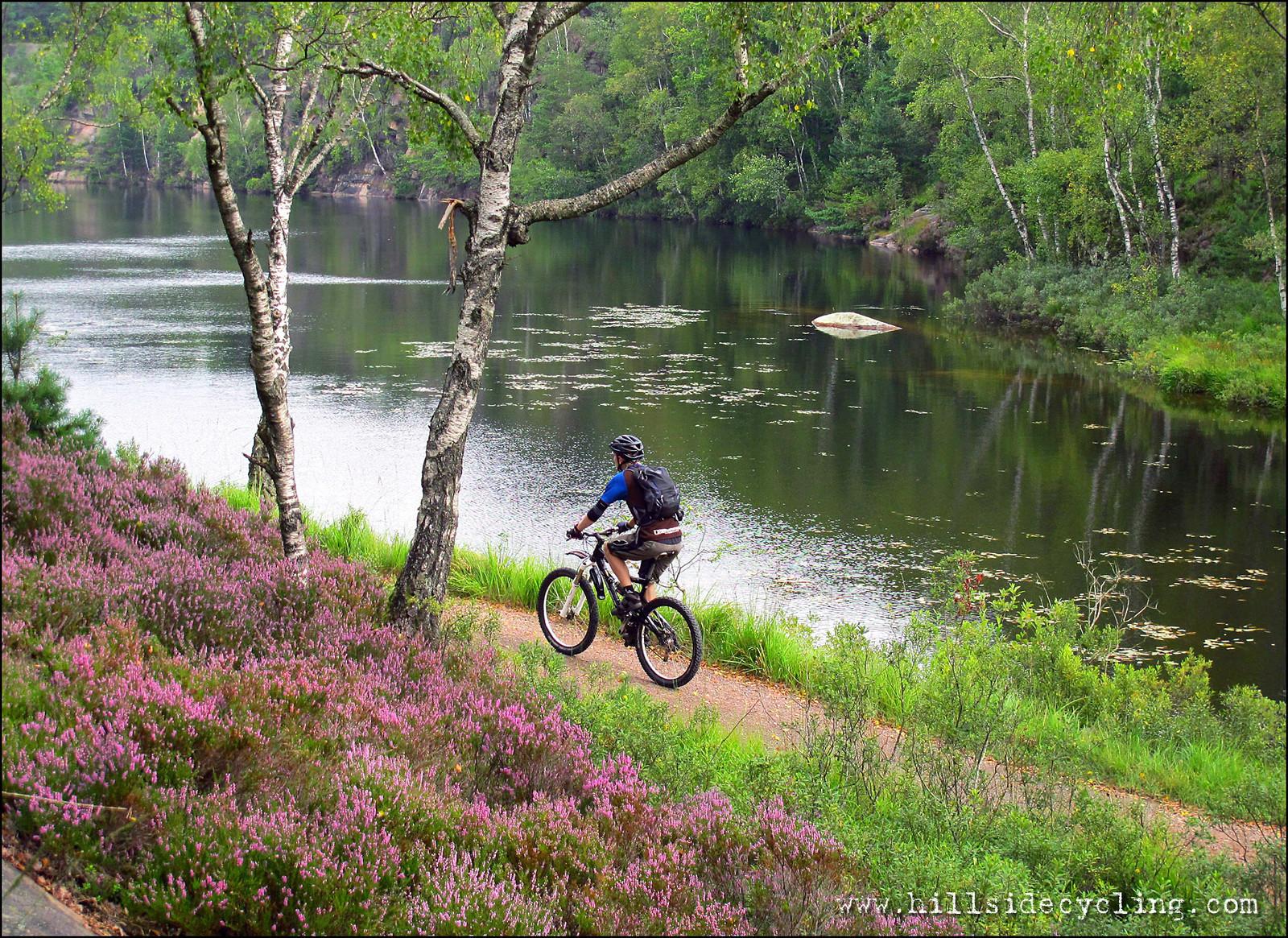 IMG 8960 2LRW - Hillside Cycling - Mountain Biking Pictures - Vital MTB