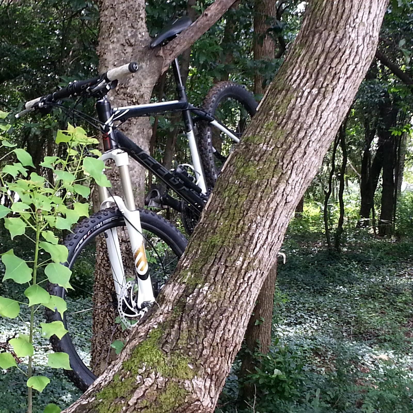IMG 20130723 143820 - rtm334 - Mountain Biking Pictures - Vital MTB