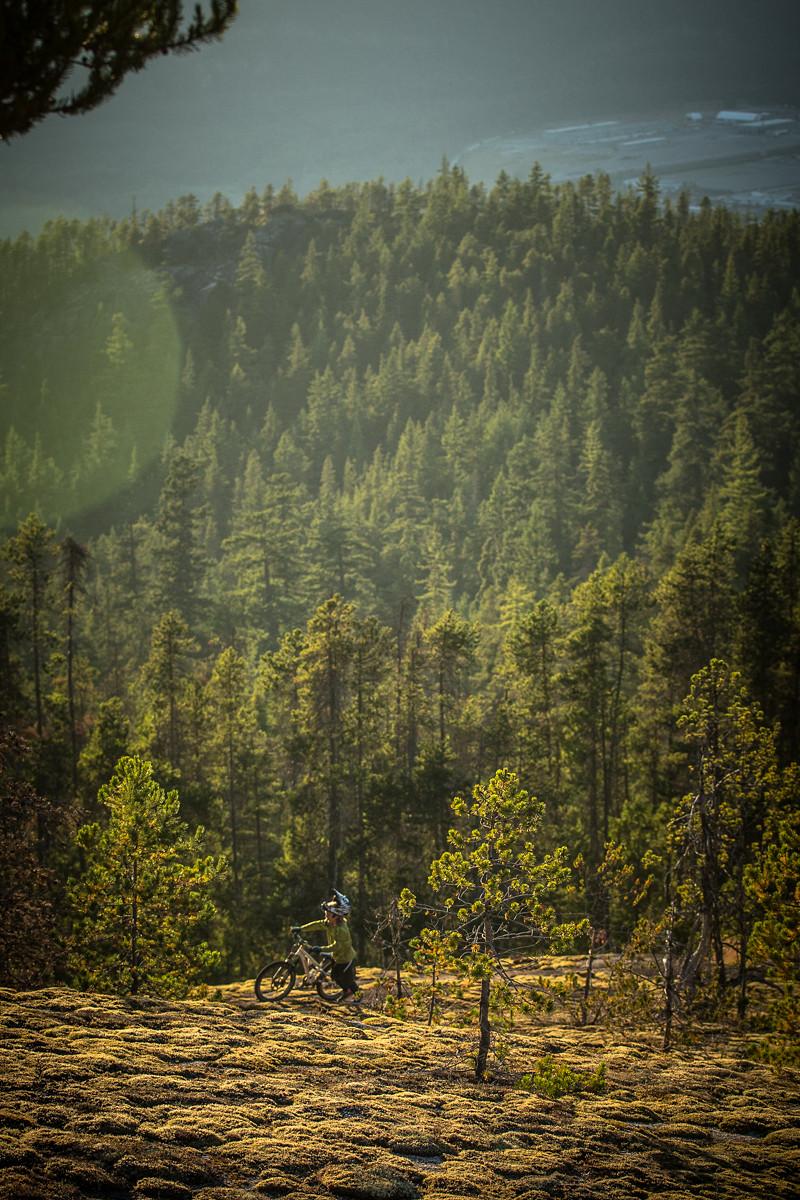Jackson pushing  - BGoldstone - Mountain Biking Pictures - Vital MTB