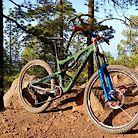 Santa Cruz Bronson custom
