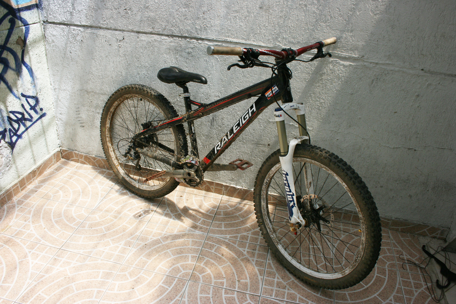 Raleigh Mistique Downhill Hardtail