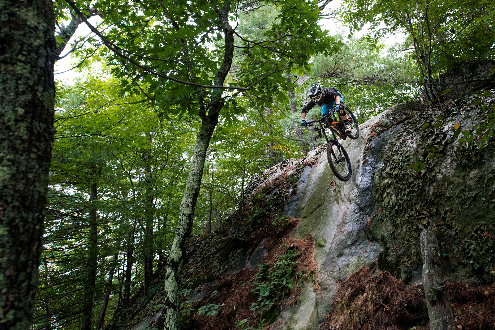 Steep - myriamlarochee - Mountain Biking Pictures - Vital MTB