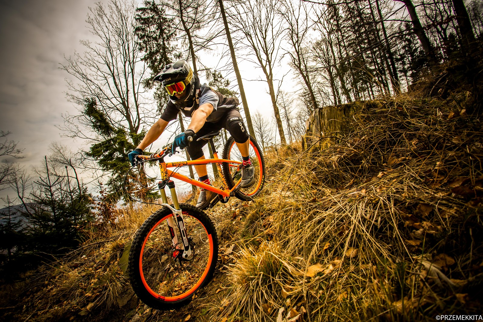 Hardtail shreddin' - Banan - Mountain Biking Pictures - Vital MTB