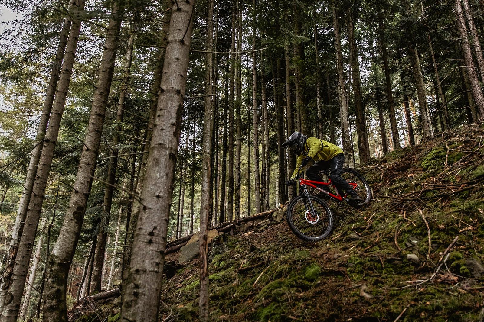 fresh loam - Banan - Mountain Biking Pictures - Vital MTB