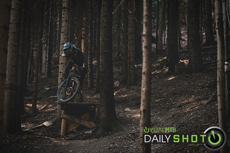 Welcome to the woods - Banan - Mountain Biking Pictures - Vital MTB