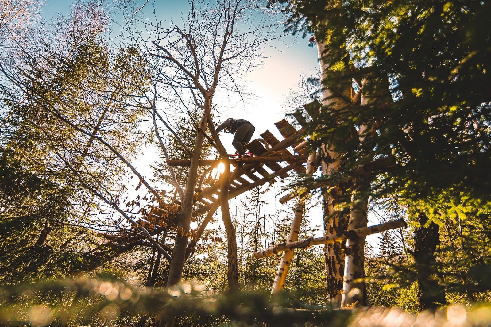 NS  - Banan - Mountain Biking Pictures - Vital MTB