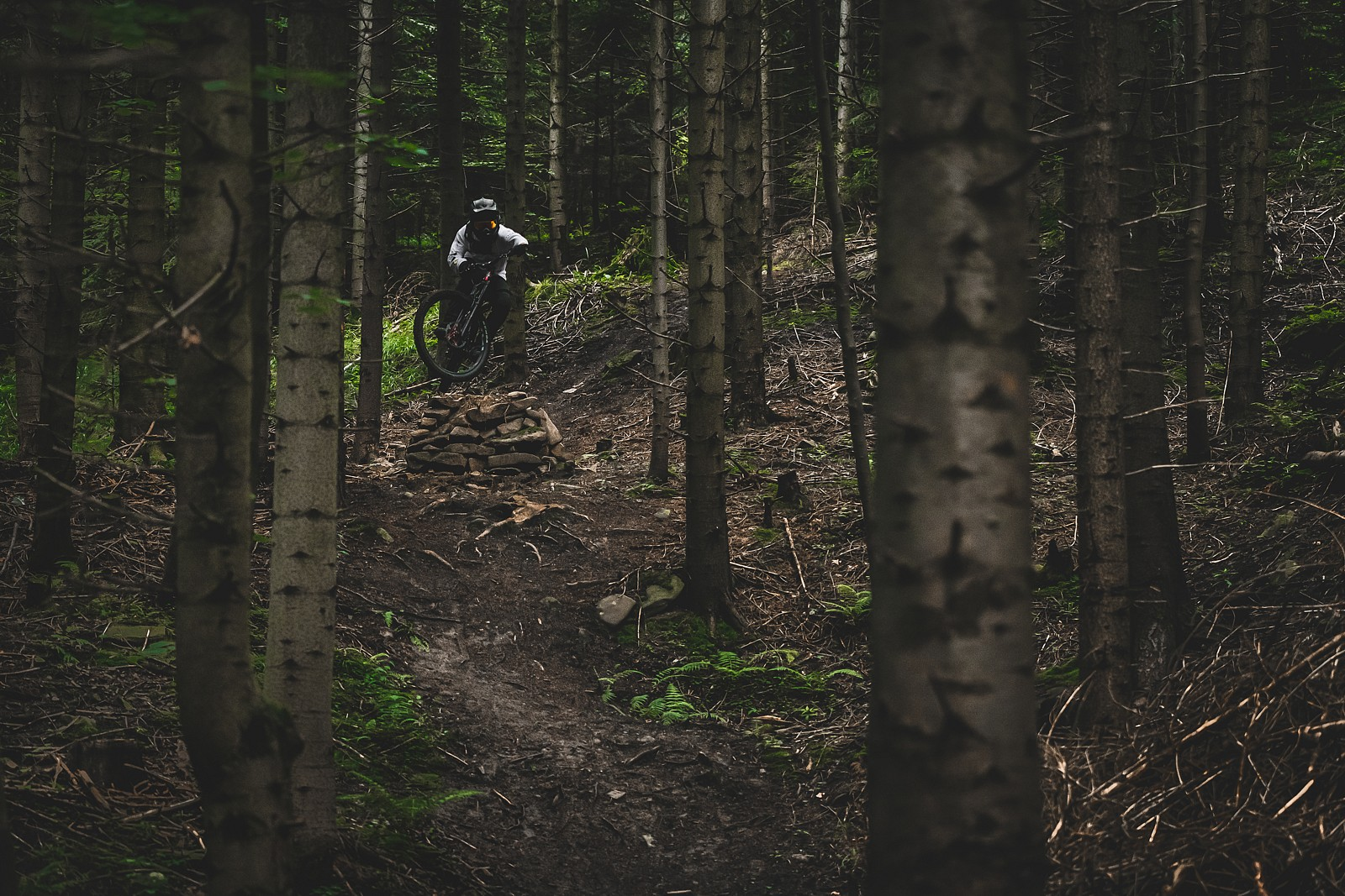 Welcome to the jungle - Banan - Mountain Biking Pictures - Vital MTB