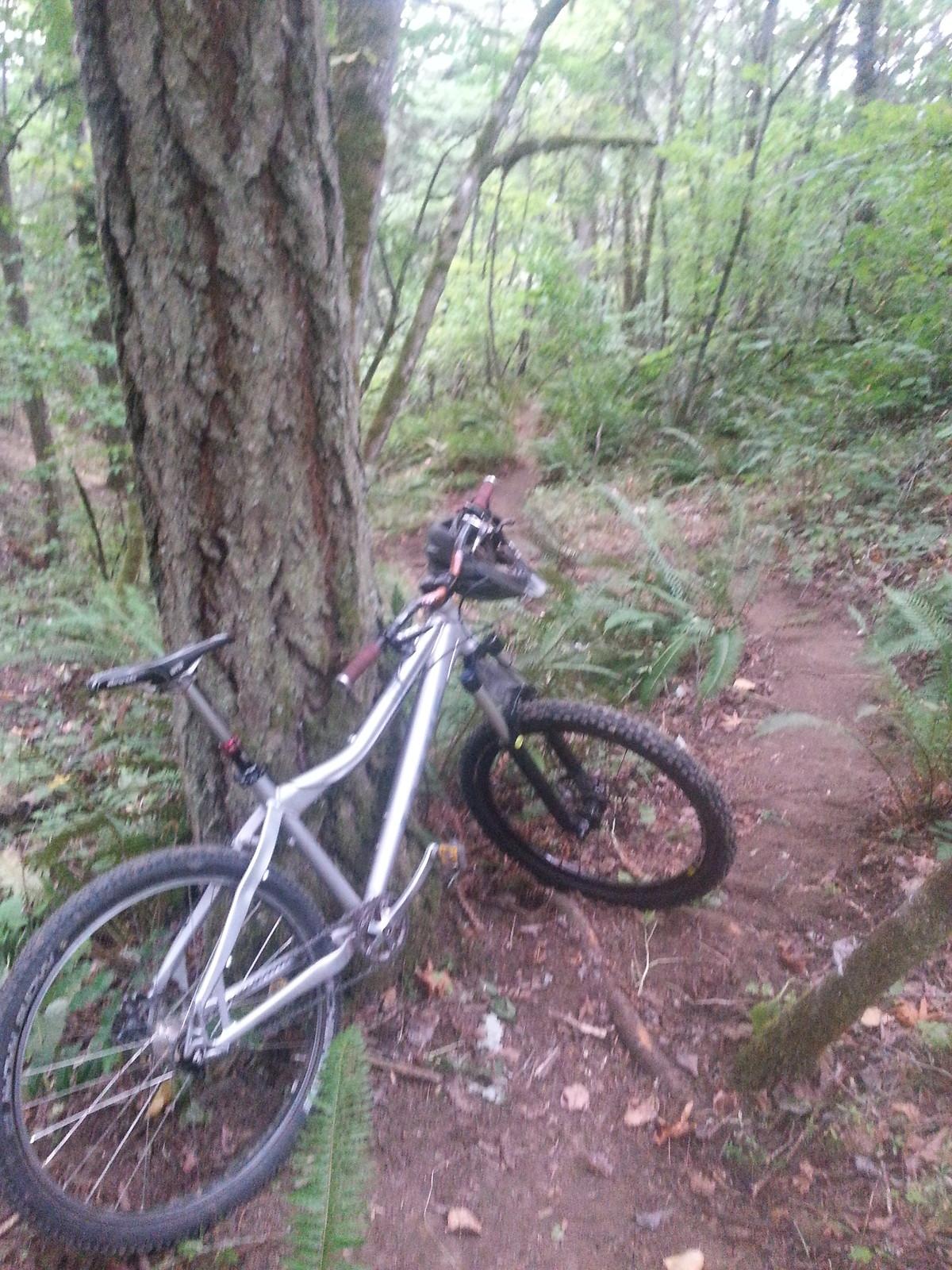 Jamis Komodo SS at creek - RevBaker - Mountain Biking Pictures - Vital MTB