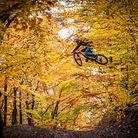 Autumn at Kysak