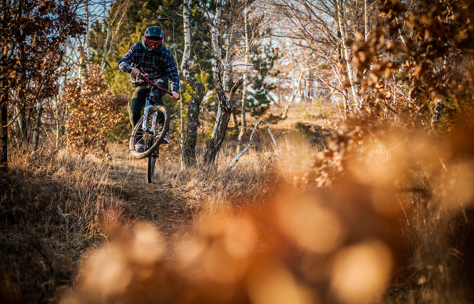 brezacik  - purehell - Mountain Biking Pictures - Vital MTB