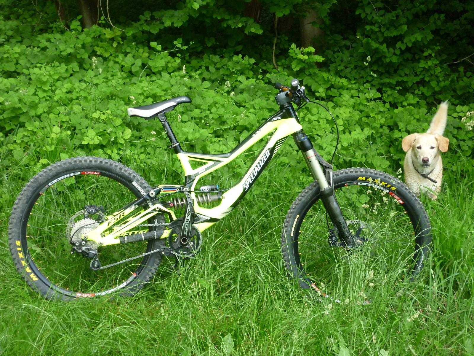 i like my bike!