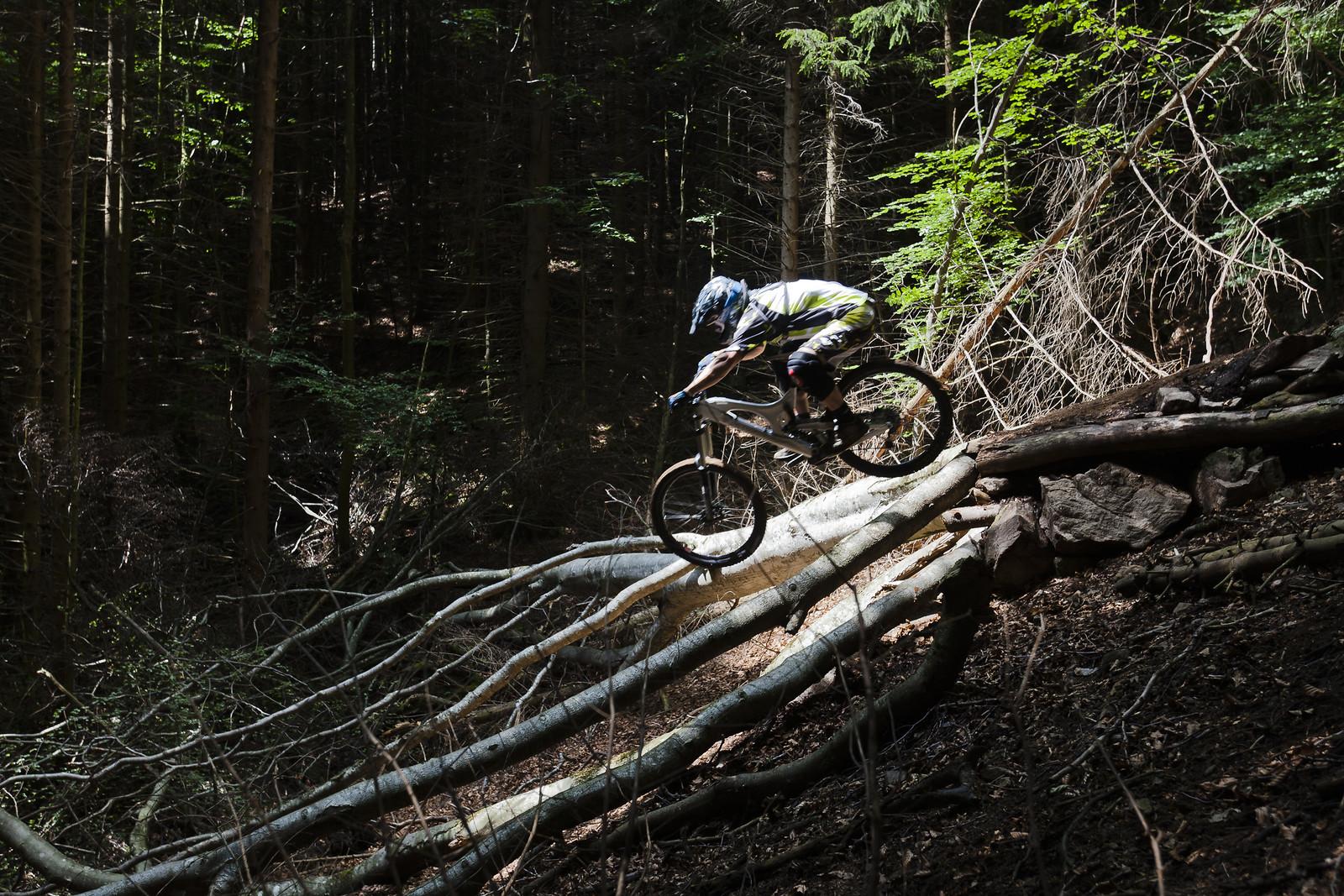Black Forest Secret Spot - quasibinaer - Mountain Biking Pictures - Vital MTB