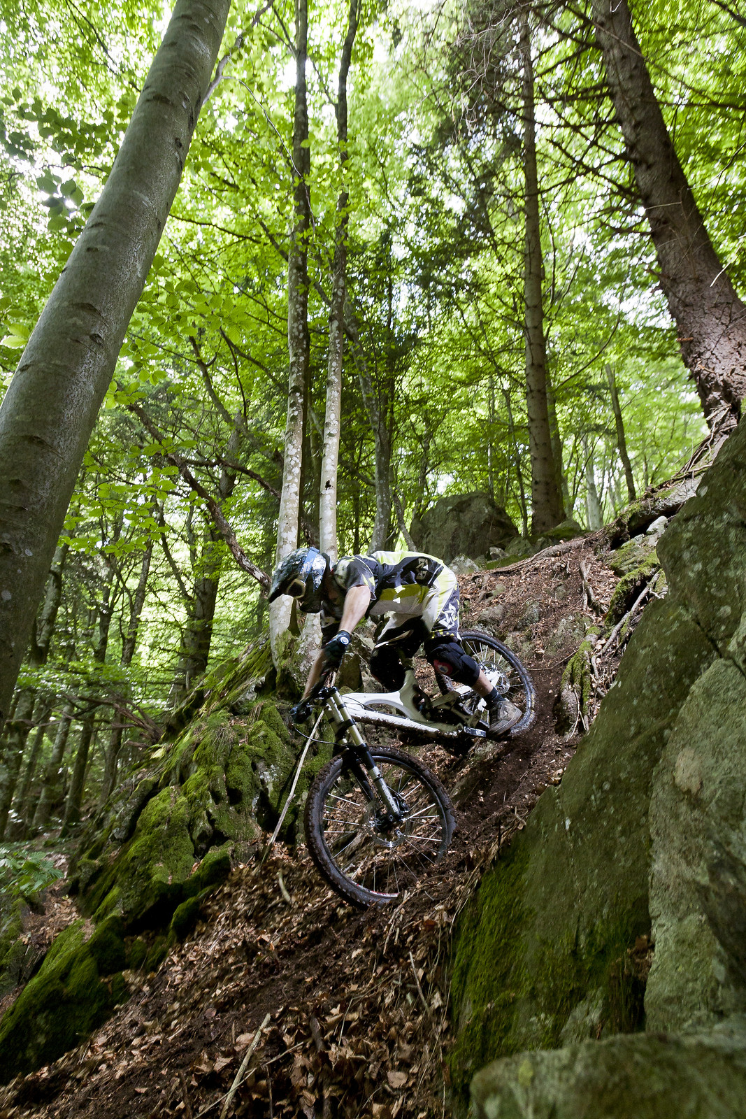 Black Forest Secret Spot - quasibinaer - Mountain Biking Pictures - Vital MTB