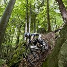 Secret Spot in the Black Forest