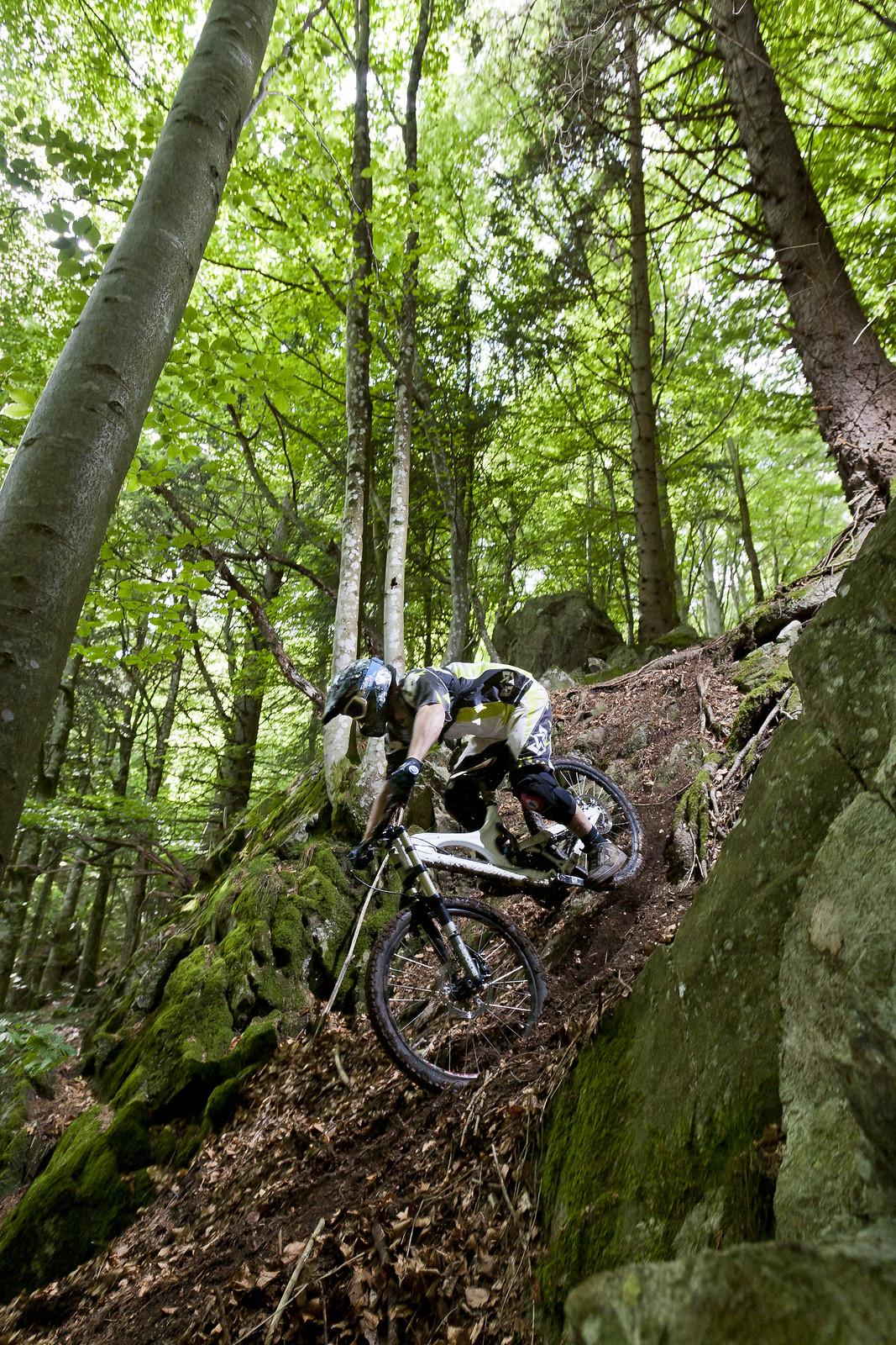 Secret Spot in the Black Forest - quasibinaer - Mountain Biking Pictures - Vital MTB