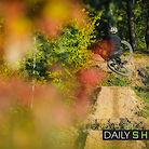 Dirt. Table. Autumn