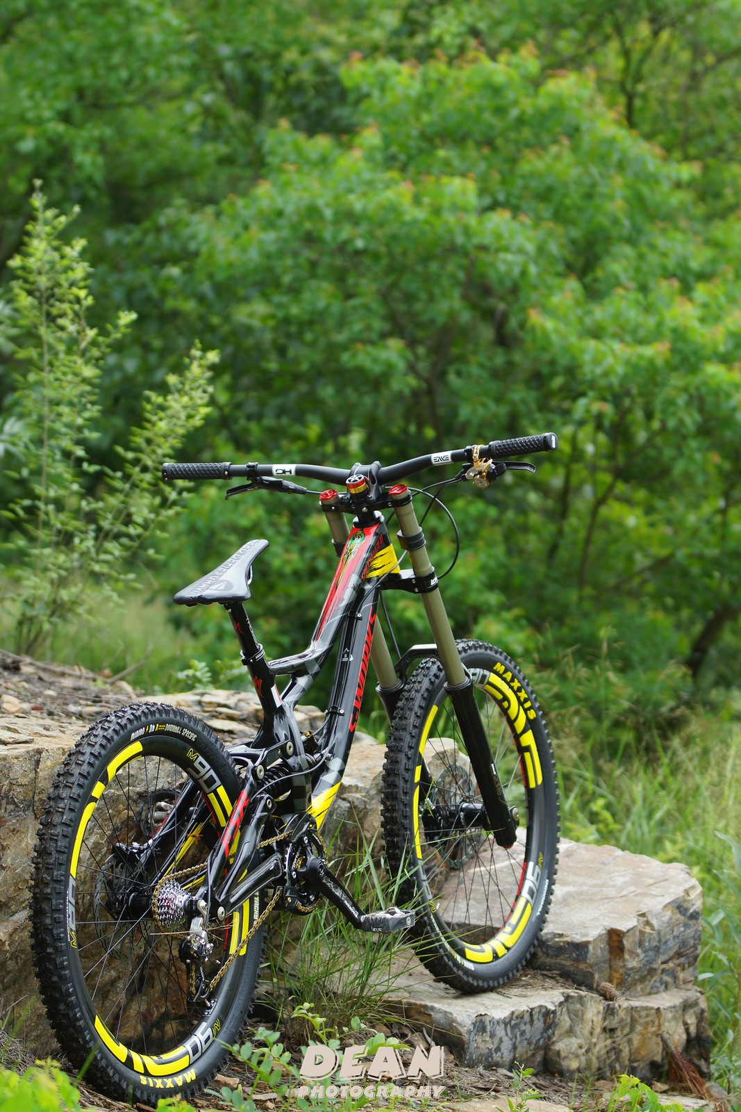 Specialized Demo8 TLD