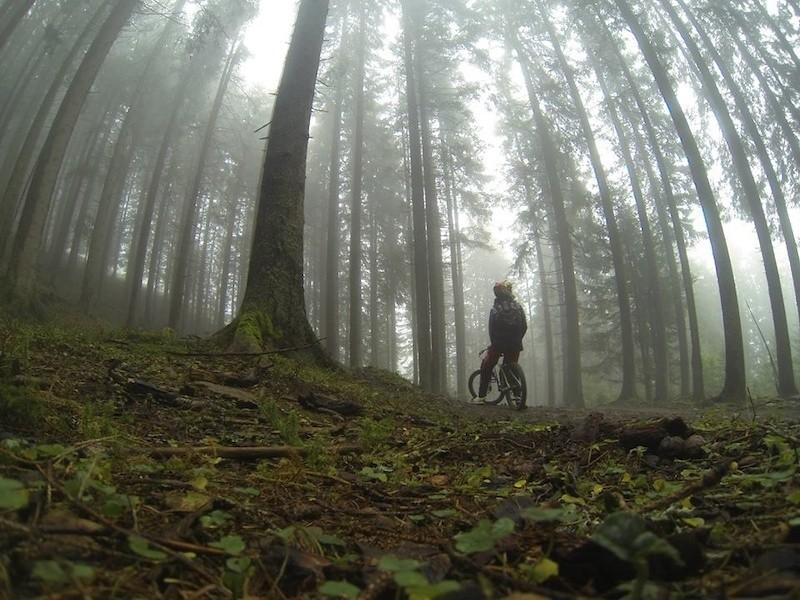 foggy day - Nonotherthanclaus - Mountain Biking Pictures - Vital MTB