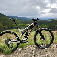 2020 Rocky Mountain Instinct C90