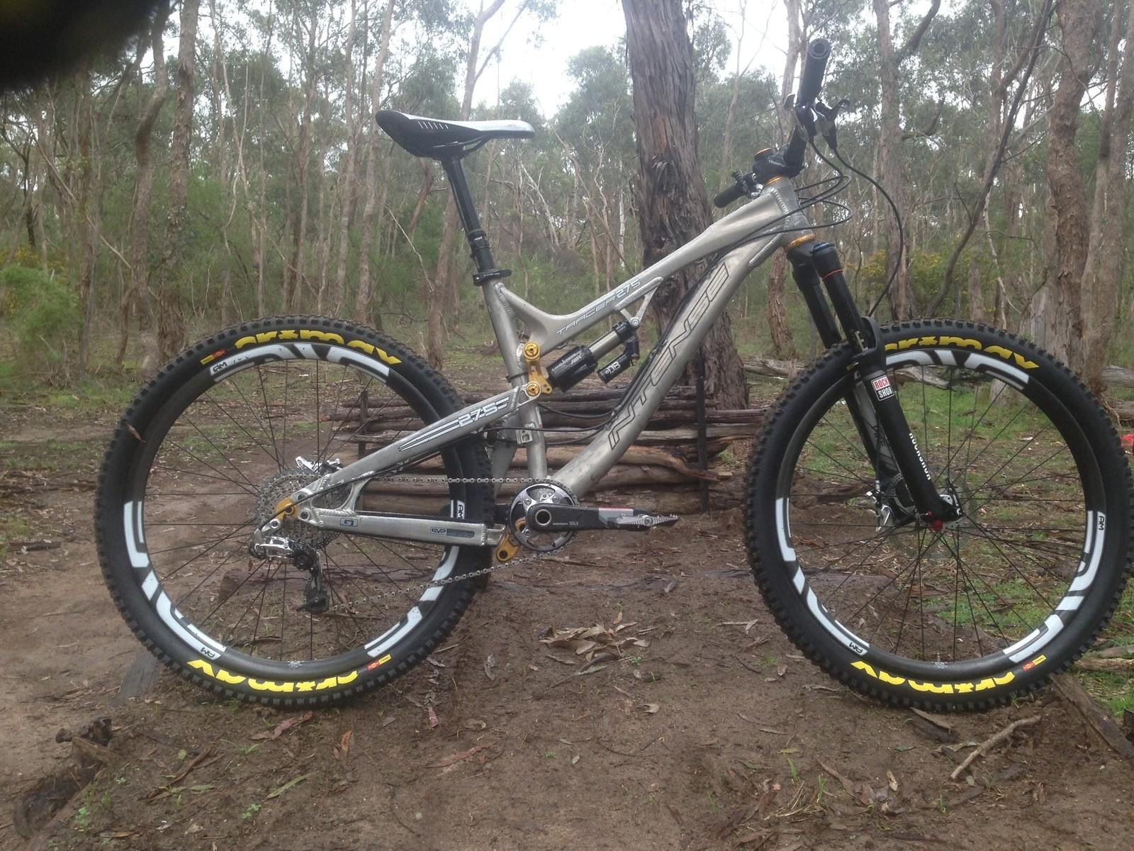 MoosyB's Tracer 275