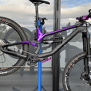 Purple Canyon Torque 8.0 2020