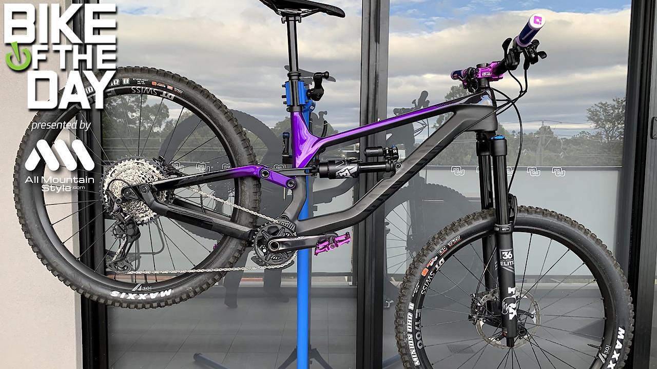 Purple Canyon Torque 8.0 2020