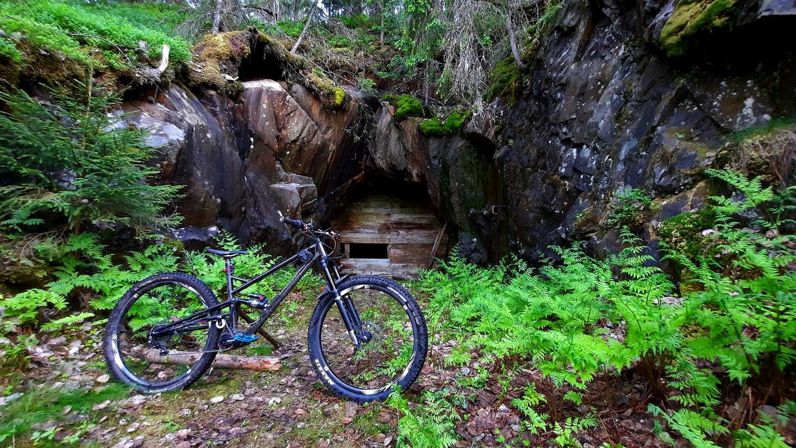 IMG 20210608 205540 331 - EST - Mountain Biking Pictures - Vital MTB