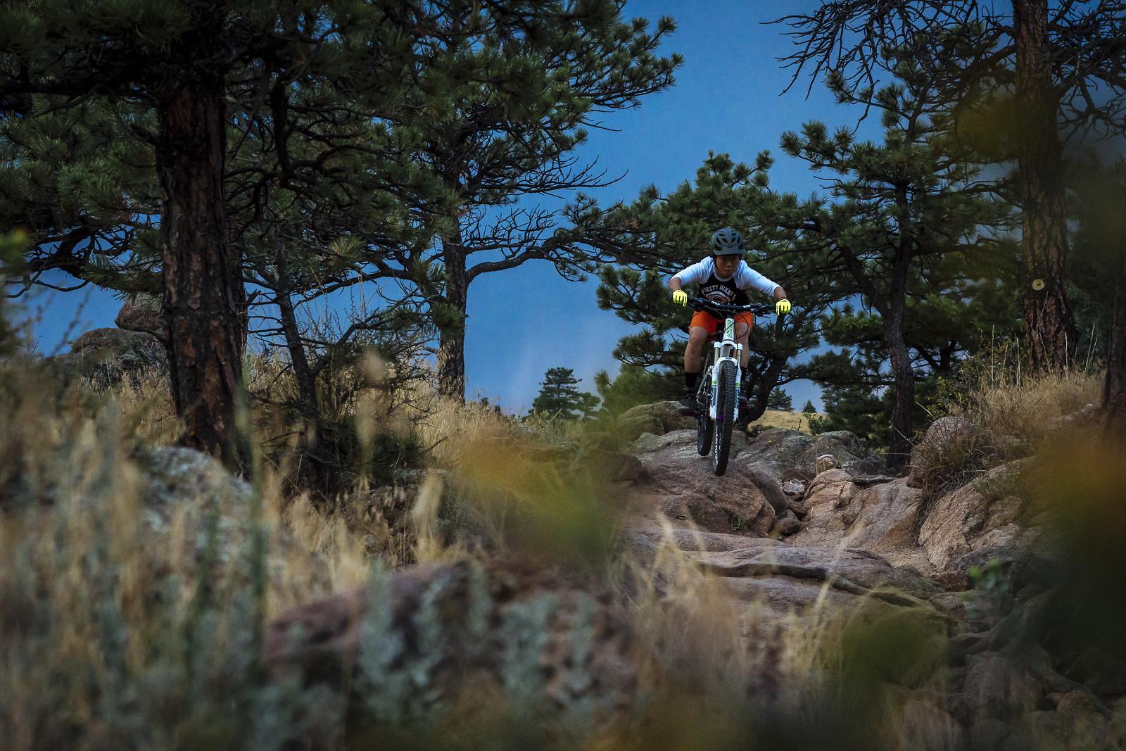 Autumn Trail Riding - gold_007 - Mountain Biking Pictures - Vital MTB