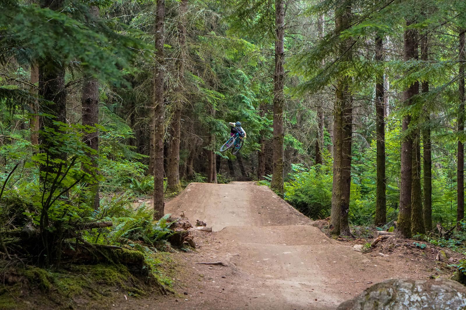 Bellingham Flow - gold_007 - Mountain Biking Pictures - Vital MTB