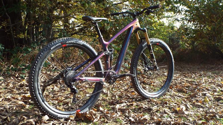 Trek Fuel EX 9 9 Custom Build / Paint - Frantic_Shishkebab's