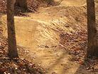 Elevated Trail Design-Briar Chapel mtb trail