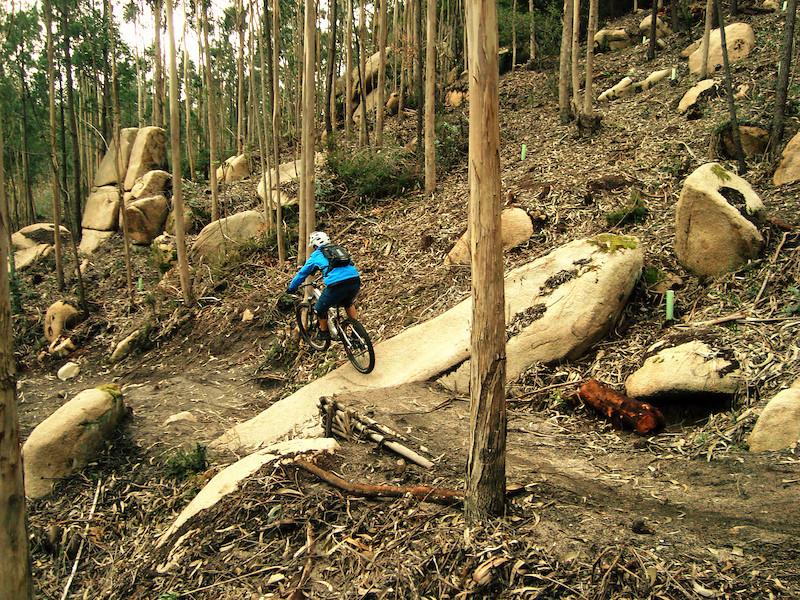 p4pb10576538 - David9180 - Mountain Biking Pictures - Vital MTB