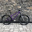 Norco Torrent Custom