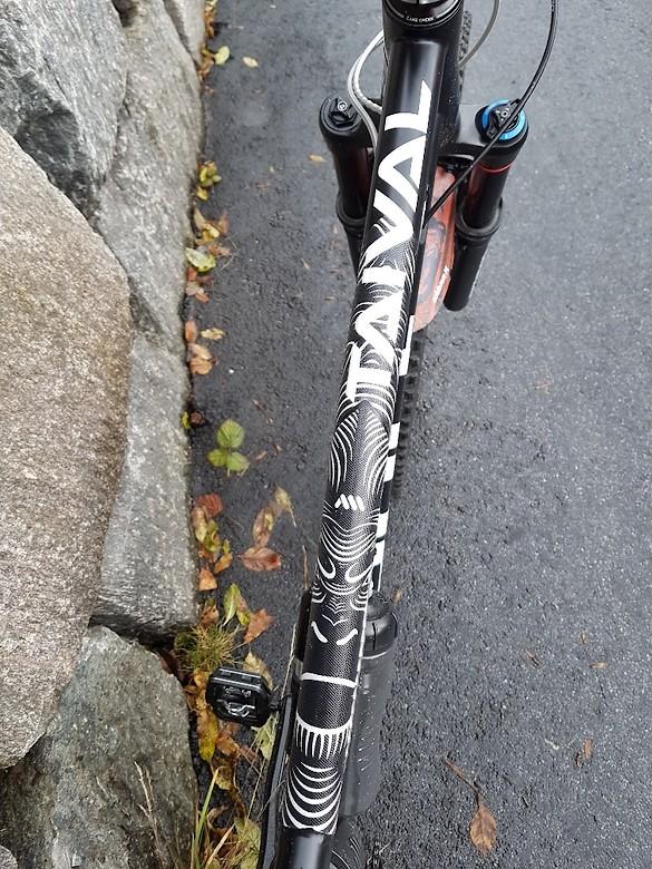 Steel ape - rickardoooo's Bike Check - Vital MTB
