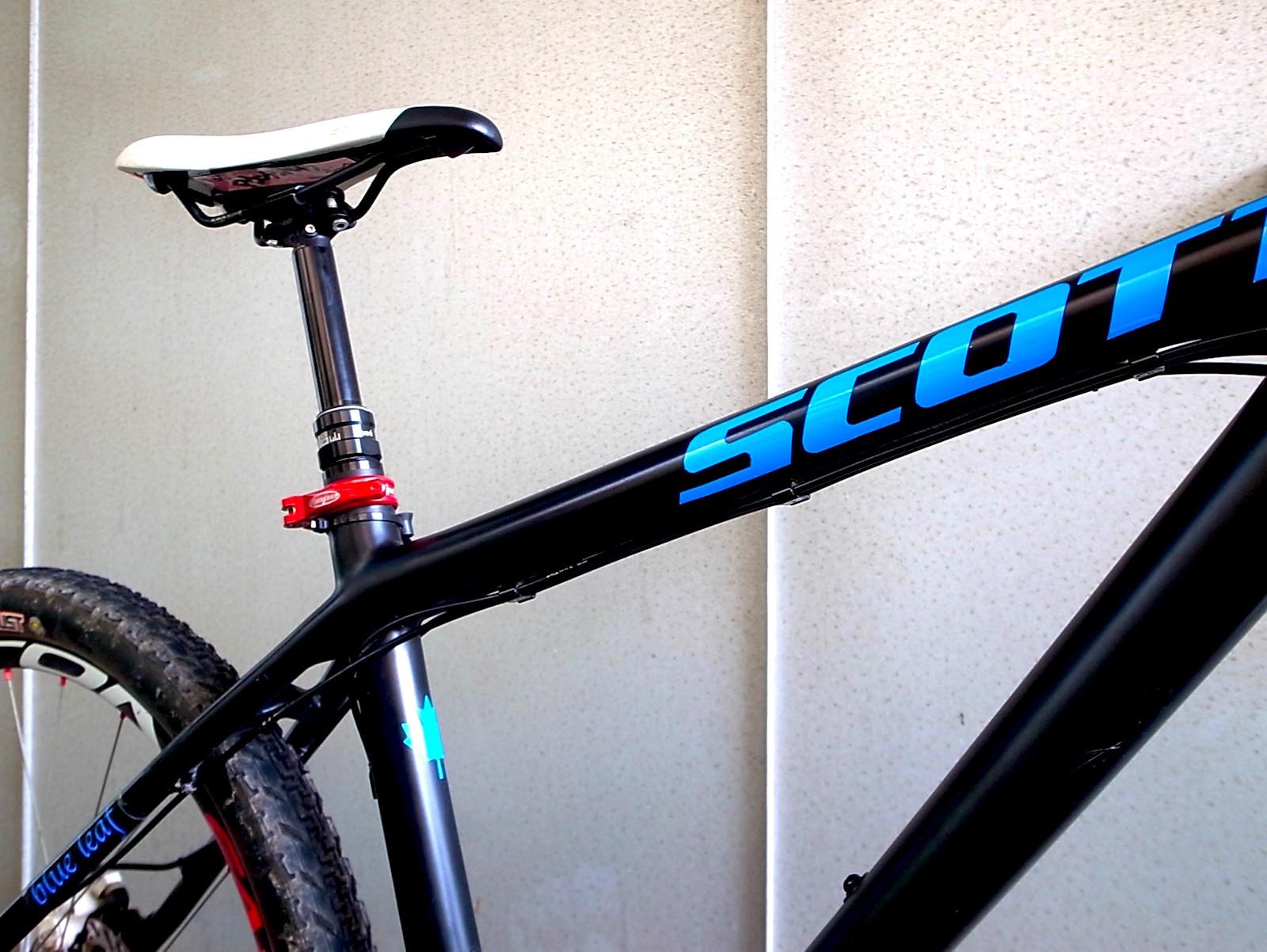 Scott Scale35 Carbon Custom Painted Blue Leaf