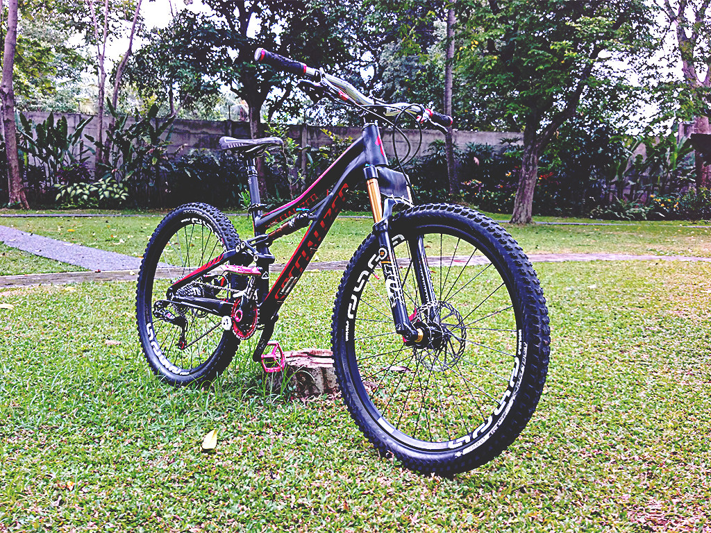Specialized Enduro SX