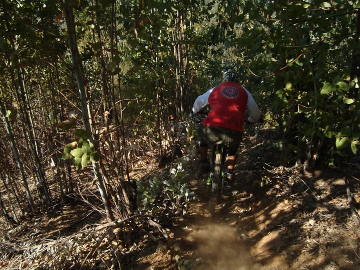 26961_1404606314598_1215585165_31162574_3132345_n - Nico Dezerega - Mountain Biking Pictures - Vital MTB