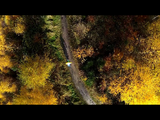 SAY CHEESE - A Mountainbike Movie [Official Trailer]