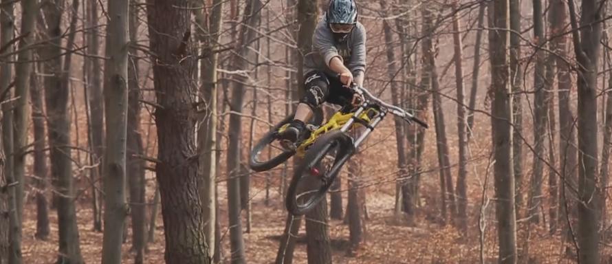 Local Shred with Maciej Kamiński