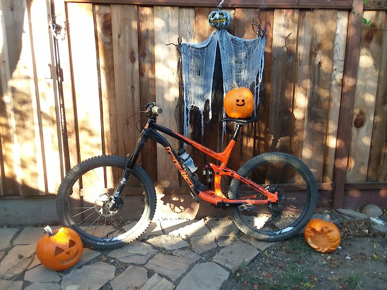 Transition Scout - Halloween Birthday Build