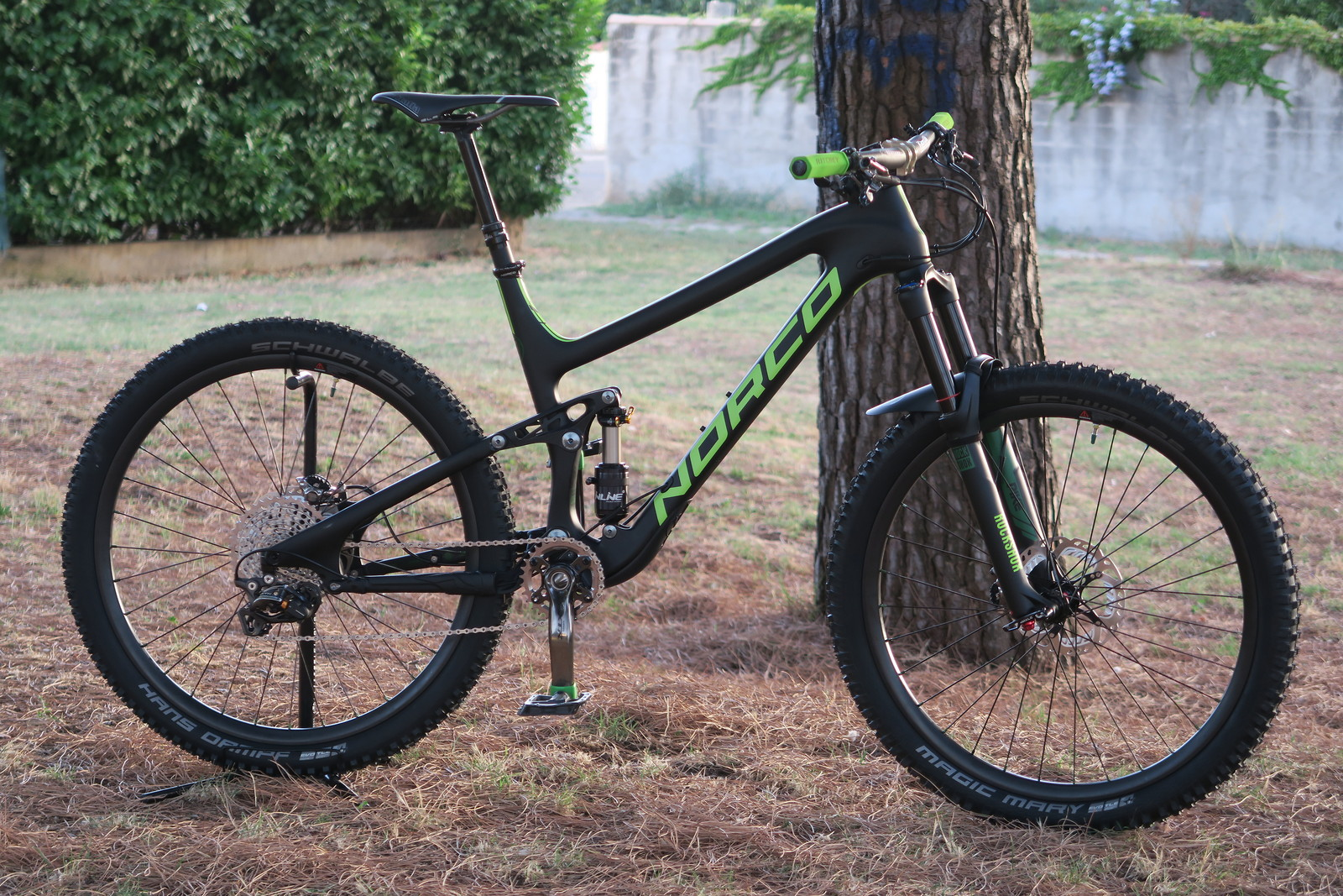 Fully custom Norco Sight carbon