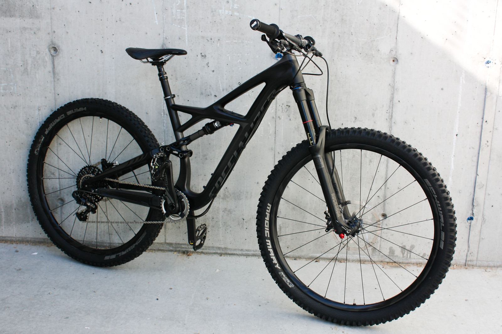 Specialized Enduro 29 stealth edition
