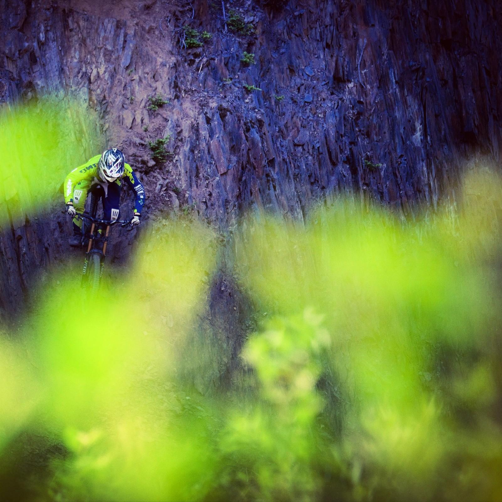 Blending In - Dylan Kish - Mountain Biking Pictures - Vital MTB