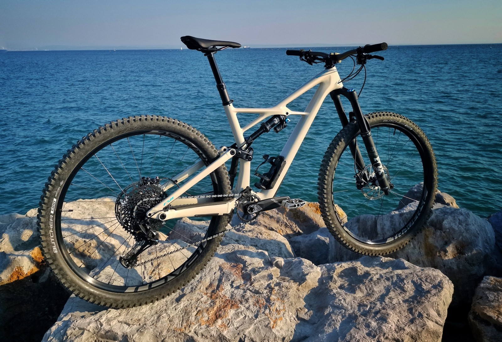 "Specialized Enduro elite carbon 29"" 2019"