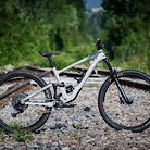 Specialized Enduro Elite 2020